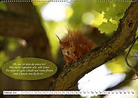 Eichhörnchen - Lustige Kurzgeschichten mit den quirligen Wildtieren (Wandkalender 2019 DIN A2 quer) - Produktdetailbild 2