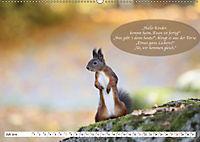 Eichhörnchen - Lustige Kurzgeschichten mit den quirligen Wildtieren (Wandkalender 2019 DIN A2 quer) - Produktdetailbild 7