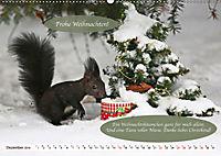 Eichhörnchen - Lustige Kurzgeschichten mit den quirligen Wildtieren (Wandkalender 2019 DIN A2 quer) - Produktdetailbild 12