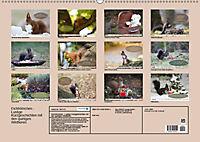 Eichhörnchen - Lustige Kurzgeschichten mit den quirligen Wildtieren (Wandkalender 2019 DIN A2 quer) - Produktdetailbild 13