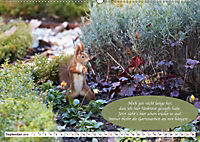 Eichhörnchen - Lustige Kurzgeschichten mit den quirligen Wildtieren (Wandkalender 2019 DIN A2 quer) - Produktdetailbild 9