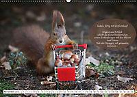 Eichhörnchen - Lustige Kurzgeschichten mit den quirligen Wildtieren (Wandkalender 2019 DIN A2 quer) - Produktdetailbild 11