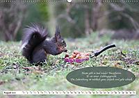 Eichhörnchen - Lustige Kurzgeschichten mit den quirligen Wildtieren (Wandkalender 2019 DIN A2 quer) - Produktdetailbild 8