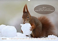 Eichhörnchen - Lustige Kurzgeschichten mit den quirligen Wildtieren (Wandkalender 2019 DIN A3 quer) - Produktdetailbild 1