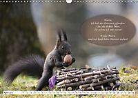 Eichhörnchen - Lustige Kurzgeschichten mit den quirligen Wildtieren (Wandkalender 2019 DIN A3 quer) - Produktdetailbild 4