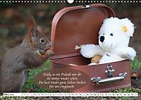 Eichhörnchen - Lustige Kurzgeschichten mit den quirligen Wildtieren (Wandkalender 2019 DIN A3 quer) - Produktdetailbild 3