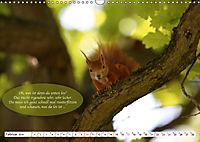 Eichhörnchen - Lustige Kurzgeschichten mit den quirligen Wildtieren (Wandkalender 2019 DIN A3 quer) - Produktdetailbild 2