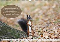 Eichhörnchen - Lustige Kurzgeschichten mit den quirligen Wildtieren (Wandkalender 2019 DIN A3 quer) - Produktdetailbild 10