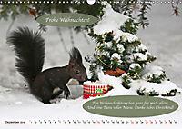 Eichhörnchen - Lustige Kurzgeschichten mit den quirligen Wildtieren (Wandkalender 2019 DIN A3 quer) - Produktdetailbild 12