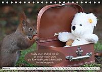 Eichhörnchen - Lustige Kurzgeschichten mit den quirligen Wildtieren (Tischkalender 2019 DIN A5 quer) - Produktdetailbild 3