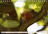 Eichhörnchen - Lustige Kurzgeschichten mit den quirligen Wildtieren (Tischkalender 2019 DIN A5 quer) - Produktdetailbild 2