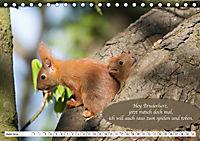 Eichhörnchen - Lustige Kurzgeschichten mit den quirligen Wildtieren (Tischkalender 2019 DIN A5 quer) - Produktdetailbild 6