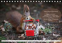 Eichhörnchen - Lustige Kurzgeschichten mit den quirligen Wildtieren (Tischkalender 2019 DIN A5 quer) - Produktdetailbild 11