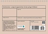 Eichhörnchen - Lustige Kurzgeschichten mit den quirligen Wildtieren (Tischkalender 2019 DIN A5 quer) - Produktdetailbild 13