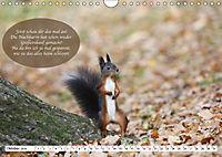 Eichhörnchen - Lustige Kurzgeschichten mit den quirligen Wildtieren (Wandkalender 2019 DIN A4 quer) - Produktdetailbild 10