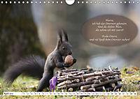 Eichhörnchen - Lustige Kurzgeschichten mit den quirligen Wildtieren (Wandkalender 2019 DIN A4 quer) - Produktdetailbild 4