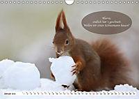 Eichhörnchen - Lustige Kurzgeschichten mit den quirligen Wildtieren (Wandkalender 2019 DIN A4 quer) - Produktdetailbild 1