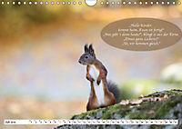 Eichhörnchen - Lustige Kurzgeschichten mit den quirligen Wildtieren (Wandkalender 2019 DIN A4 quer) - Produktdetailbild 7