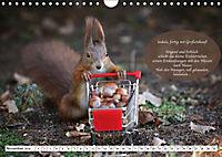 Eichhörnchen - Lustige Kurzgeschichten mit den quirligen Wildtieren (Wandkalender 2019 DIN A4 quer) - Produktdetailbild 11