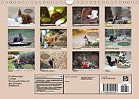 Eichhörnchen - Lustige Kurzgeschichten mit den quirligen Wildtieren (Wandkalender 2019 DIN A4 quer) - Produktdetailbild 13