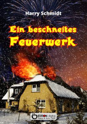 Ein beschneites Feuerwerk, Harry Schmidtt