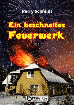 Ein beschneites Feuerwerk - Harry Schmidt |