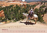Ein Cowboy und sein Pferd 2019. Impressionen von Mann und Tier (Wandkalender 2019 DIN A4 quer) - Produktdetailbild 2
