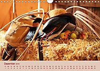 Ein Cowboy und sein Pferd 2019. Impressionen von Mann und Tier (Wandkalender 2019 DIN A4 quer) - Produktdetailbild 12