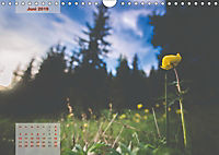 Ein Frühling in Kärnten (Wandkalender 2019 DIN A4 quer) - Produktdetailbild 6