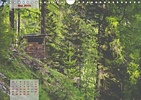Ein Frühling in Kärnten (Wandkalender 2019 DIN A4 quer) - Produktdetailbild 5