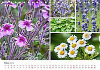 Ein Garten, der zum Verweilen einlädt (Tischkalender 2019 DIN A5 quer) - Produktdetailbild 3