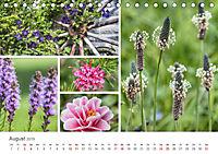 Ein Garten, der zum Verweilen einlädt (Tischkalender 2019 DIN A5 quer) - Produktdetailbild 8