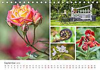 Ein Garten, der zum Verweilen einlädt (Tischkalender 2019 DIN A5 quer) - Produktdetailbild 9