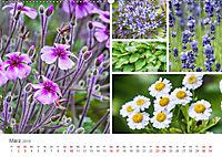 Ein Garten, der zum Verweilen einlädt (Wandkalender 2019 DIN A2 quer) - Produktdetailbild 3