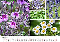 Ein Garten, der zum Verweilen einlädt (Wandkalender 2019 DIN A4 quer) - Produktdetailbild 3