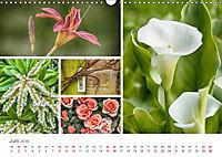 Ein Garten, der zum Verweilen einlädt (Wandkalender 2019 DIN A3 quer) - Produktdetailbild 6