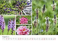 Ein Garten, der zum Verweilen einlädt (Wandkalender 2019 DIN A3 quer) - Produktdetailbild 8