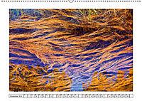 Ein intensives Farbenspiel am Wasser (Wandkalender 2019 DIN A2 quer) - Produktdetailbild 11