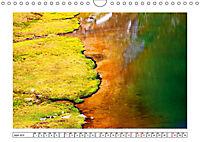 Ein intensives Farbenspiel am Wasser (Wandkalender 2019 DIN A4 quer) - Produktdetailbild 4