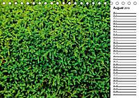 Ein Jahr Entspannen in der Natur (Tischkalender 2019 DIN A5 quer) - Produktdetailbild 8