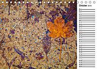 Ein Jahr Entspannen in der Natur (Tischkalender 2019 DIN A5 quer) - Produktdetailbild 10