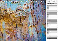Ein Jahr Entspannen in der Natur (Tischkalender 2019 DIN A5 quer) - Produktdetailbild 9