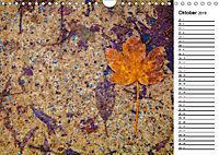 Ein Jahr Entspannen in der Natur (Wandkalender 2019 DIN A4 quer) - Produktdetailbild 10