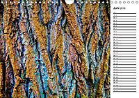 Ein Jahr Entspannen in der Natur (Wandkalender 2019 DIN A4 quer) - Produktdetailbild 6