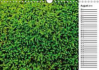 Ein Jahr Entspannen in der Natur (Wandkalender 2019 DIN A4 quer) - Produktdetailbild 8