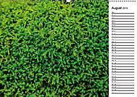 Ein Jahr Entspannen in der Natur (Wandkalender 2019 DIN A2 quer) - Produktdetailbild 8