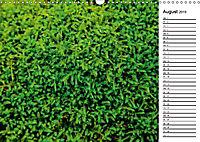 Ein Jahr Entspannen in der Natur (Wandkalender 2019 DIN A3 quer) - Produktdetailbild 8