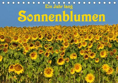 Ein Jahr lang Sonnenblumen (Tischkalender 2019 DIN A5 quer), Anke van Wyk