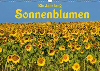 Ein Jahr lang Sonnenblumen (Wandkalender 2019 DIN A3 quer), Anke van Wyk