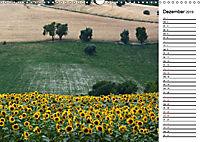 Ein Jahr lang Sonnenblumen (Wandkalender 2019 DIN A3 quer) - Produktdetailbild 12